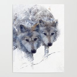 Digital Painting Of Two wolves Poster