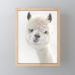 PEEKY ALPACA Framed Mini Art Print