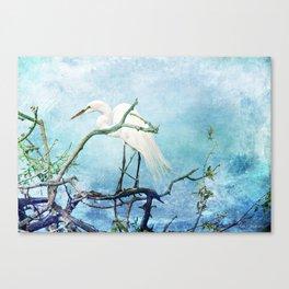 Rookery White Egret Canvas Print