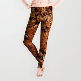 Wood - Texture and Colors Leggings