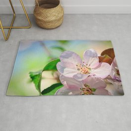 Closeup view of a pink crabapple flower. Soft background Rug