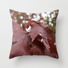 Vi-Brilliant Throw Pillow