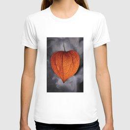 Chinese Lantern Pod Smoke - Colour Macro T-shirt