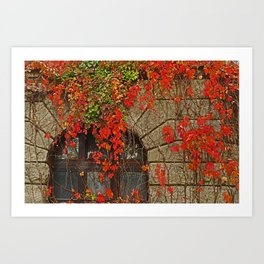 fairy-tale castle Art Print