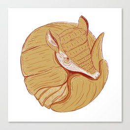 Long-nosed Armadillo Canvas Print