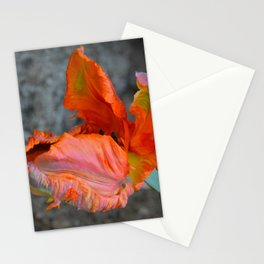Parrot Tulip by Teresa Thompson Stationery Cards