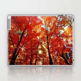 Sun in the Trees Laptop & iPad Skin