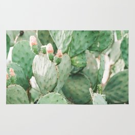 Cactus Flowers Pink And Green Desert Life Rug