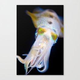 Squid #1 Canvas Print