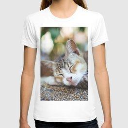 Peace Sleep T-shirt