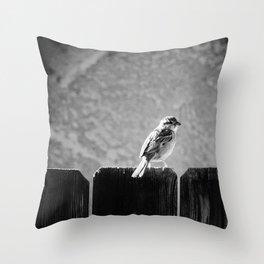 Sparrow BW Throw Pillow