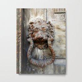 Lion in Winter Metal Print