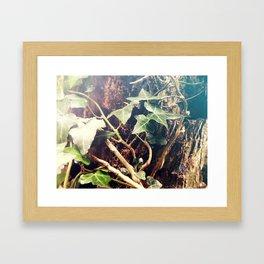 Twigs Entwined Framed Art Print