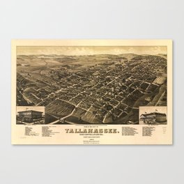 Aerial View of Tallahassee, Florida (1885) Canvas Print