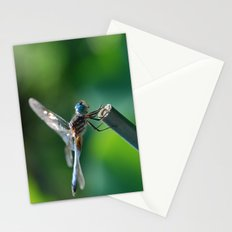 Pinpoint Stationery Cards