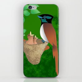 Paradise Flycatcher iPhone Skin