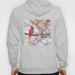 psychedelic cardinals bokeh Hoody