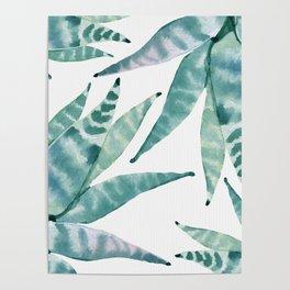 Desert Succulents Poster