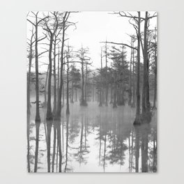 Adams Mill Pond Panorama 07 B&W Canvas Print