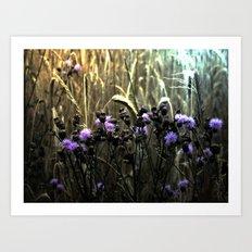 Hidden Fields Art Print