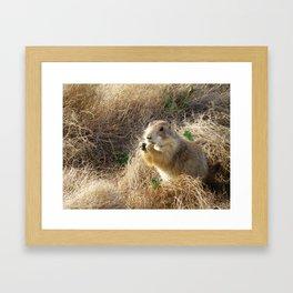Lil' Dog Framed Art Print