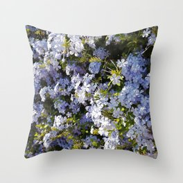 a violet flower in the heart of Athens Throw Pillow