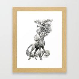 Pinus strobus Framed Art Print