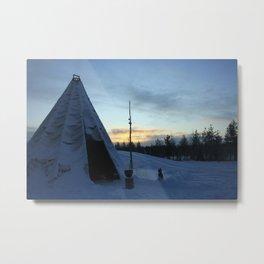Life In The Arctic Metal Print
