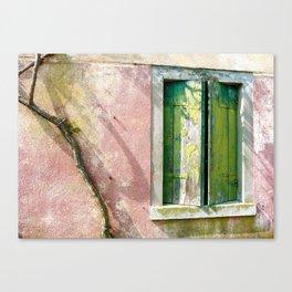 Old green window Canvas Print