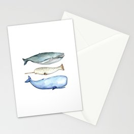 S'whale Stationery Cards