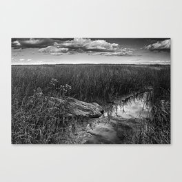 Wood In The Marsh Canvas Print