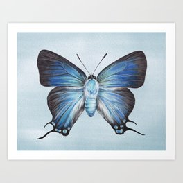 Butterfly Moth Illustration | Watercolour Painting | Insect | Blue | Nursery | Baby Room Art Print