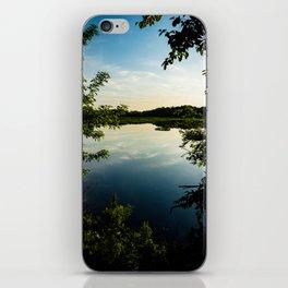 Vibrant Nature iPhone Skin
