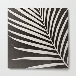 Zebra Palm / Black and White Palm Frond Metal Print