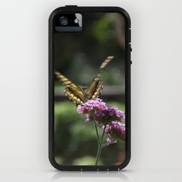 Yellow Butterfly #2 captured by JoAnne DiLorenzo iPhone Case