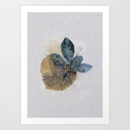 Blue Leaves Eco-print Art Print
