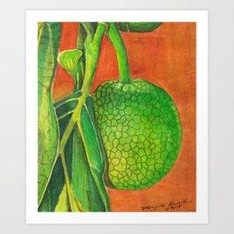 Breadfruit in Watercolor Art Print