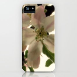 Spring Romance iPhone Case