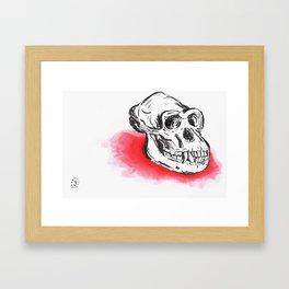 Ape Shit  Framed Art Print