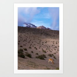 Chimborazo, Ecuador Art Print