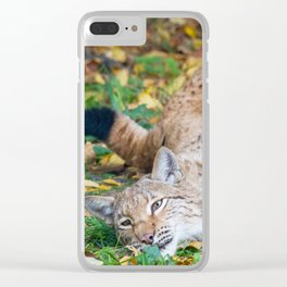 Playful Lynx Clear iPhone Case