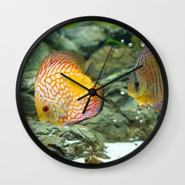 discus Wall Clock