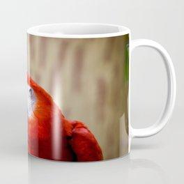 Red Macaw Coffee Mug