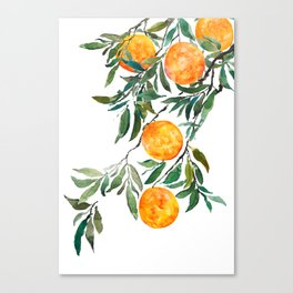 orange watercolor Canvas Print