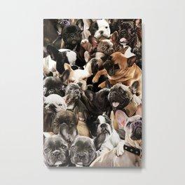 French Bulldogs Metal Print
