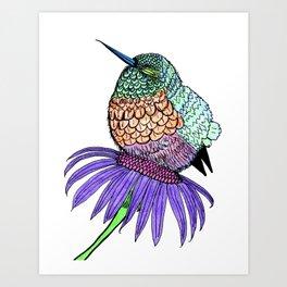fluffy baby hummingbird art print