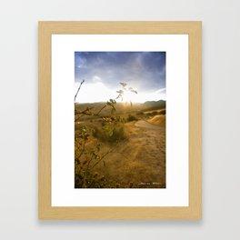 Atardeceres Framed Art Print