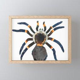 Harry Tarrantula Framed Mini Art Print