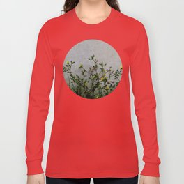 Minimal flora - yellow daisies wild flowers Long Sleeve T-shirt