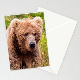 Brown Bear Kodiak Stationery Cards